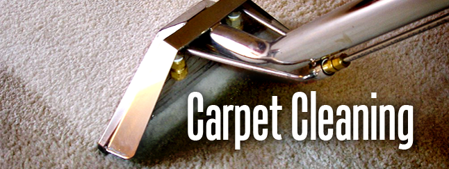 Carpet Cleaning Pro Steamers